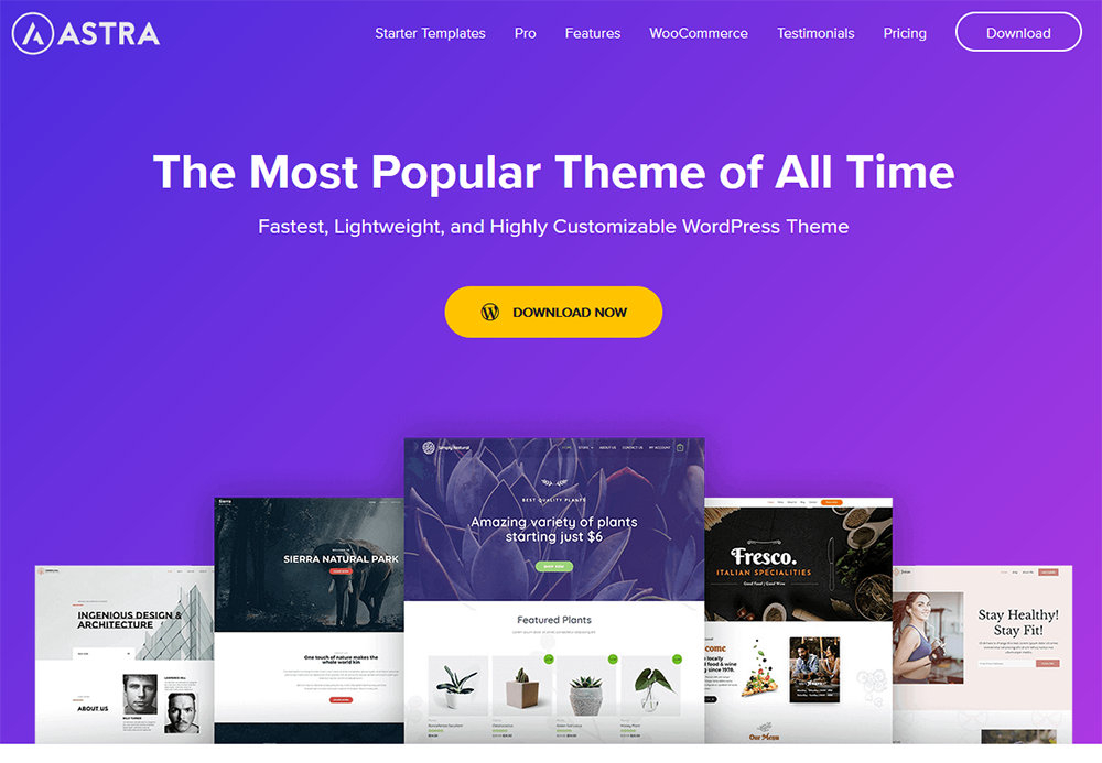Free theme that is popular and comes highly recommended